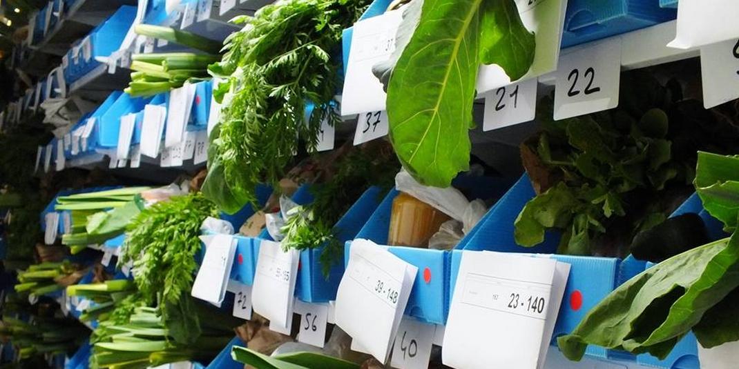 Kelbongoo : comment en finir avec le supermarché ?