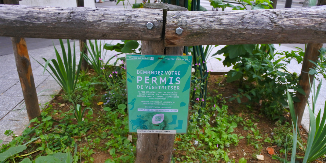 Comment jardiner à Paris ? Le permis de végétaliser