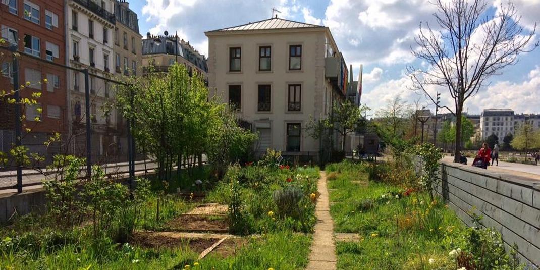 Le jardin partagé Le trèfle d'Eole – Paris 18