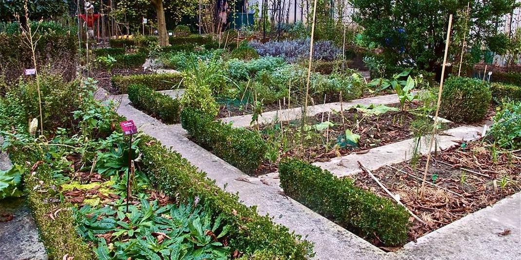 Le jardin partag du clos des blancs manteaux paris 04 le cri du z bre - Jardin du clos des blancs manteaux ...