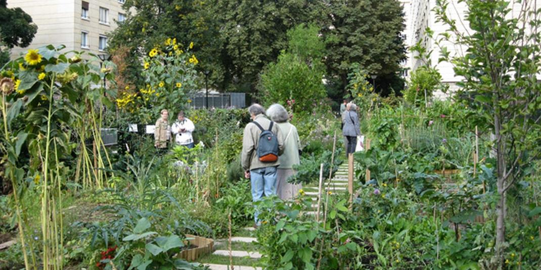Le jardin partagé Couleurs et Senteurs – Paris 19