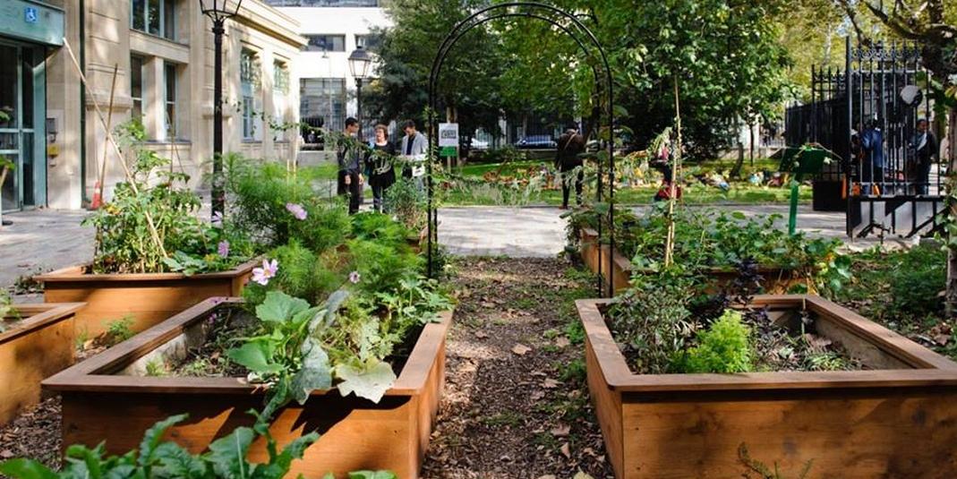 Le jardin partagé Le petit jardin du monde – Paris 12