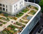 Comment jardiner à Paris ? Les jardins partagés