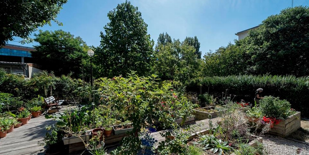 Le jardin partagé Le Clos Garcia – Paris 20