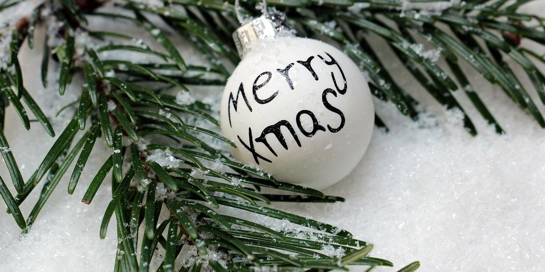 Sapin de Noël : top 4 des idées pour ne pas finir sur le trottoir