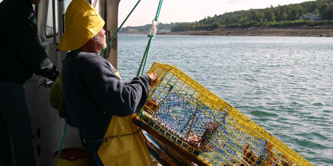 Poiscaille, de la pêche durable à Paris