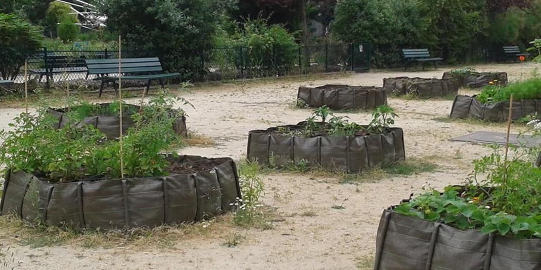 Les jardins partagés de l'Orée du Bois – Paris 16