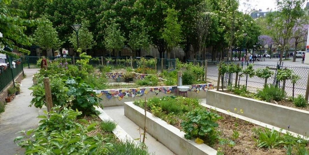 Le jardin partagé A la bonne herbe – Paris 19