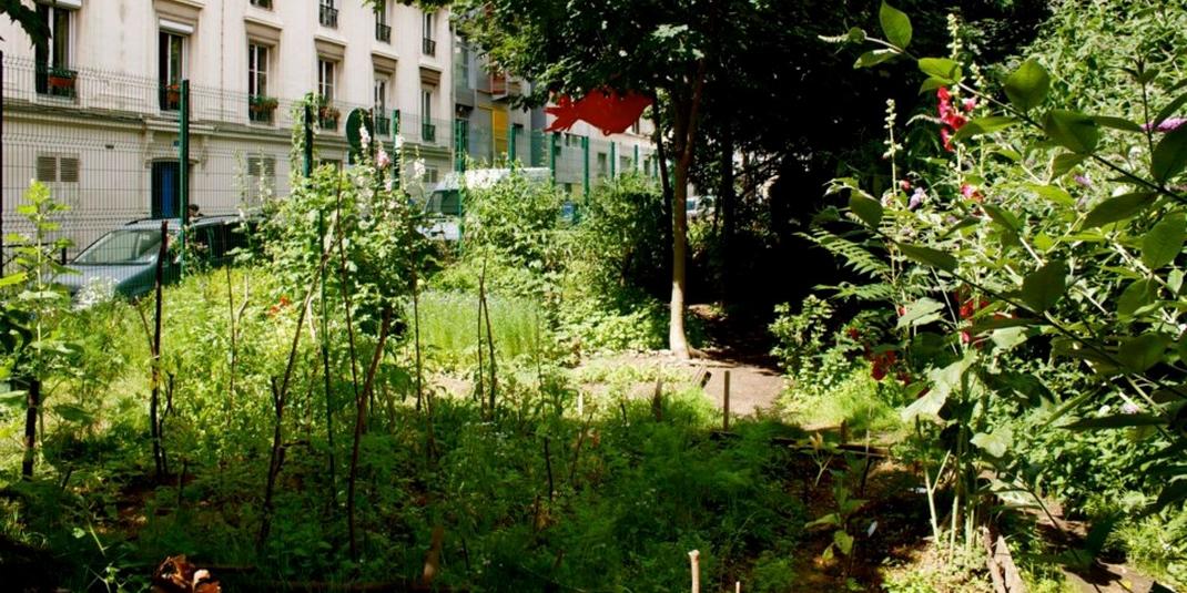 Le Jardin Partag Le Bois Dormoy Paris 18 Le Cri Du Z Bre