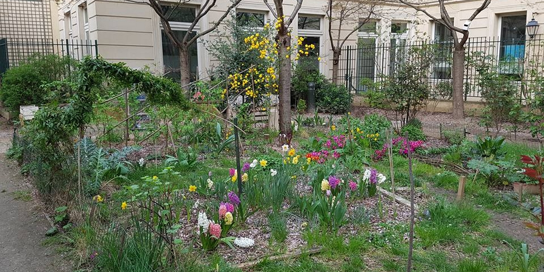 Le jardin partagé Les 1001 feuilles – Paris 03